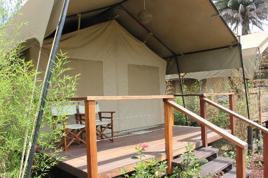 Wildebeest Eco Camp: Our tent