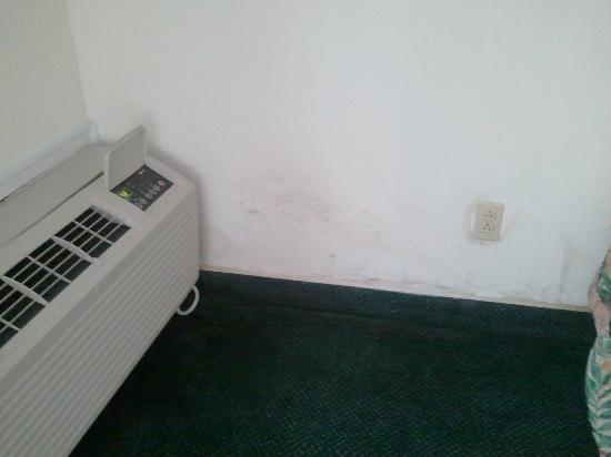 The Resort at Fairfield Harbour: moldy wall next to air conditioner