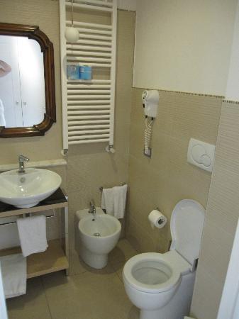 Ferretti Beach Hotel: Bagno ampio (Camera Std)