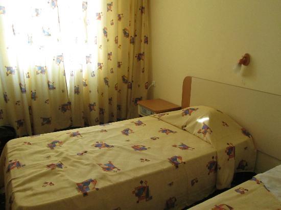 Balkan Hotel : Chambre