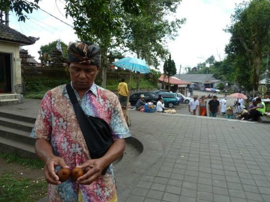 Bali Entdecken: Uja lässt uns die Schlangenfrucht probieren.