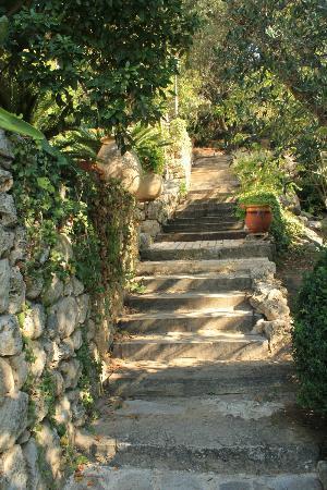 Chez Dany - Maison D'Hotes : escalier d'accès aux chambres du bas et à la piscine