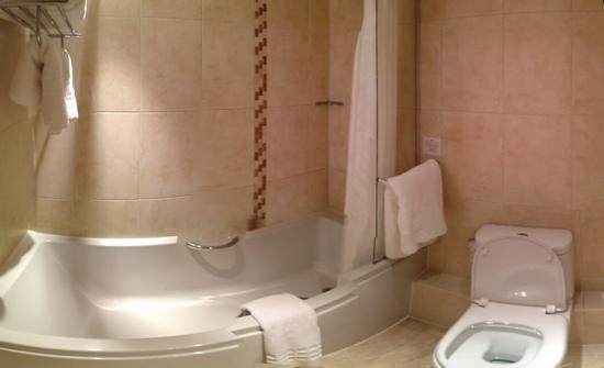 Hawkwell House Hotel: bathroom in 224
