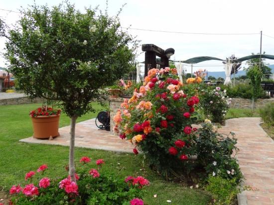 La Mucchia Casa Vacanza: Flower Garden