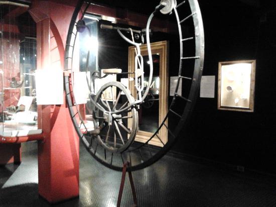 Museo delle curiosita