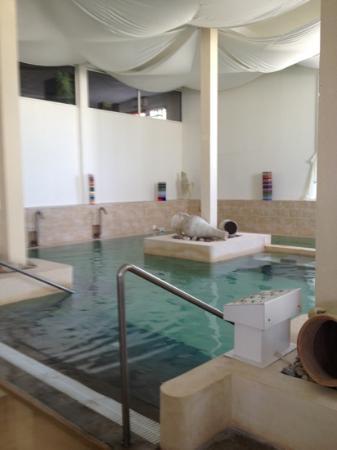 Acropole du Spa : piscine