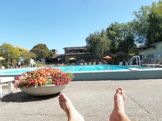 Best Western Plus Corte Madera Inn: poolside