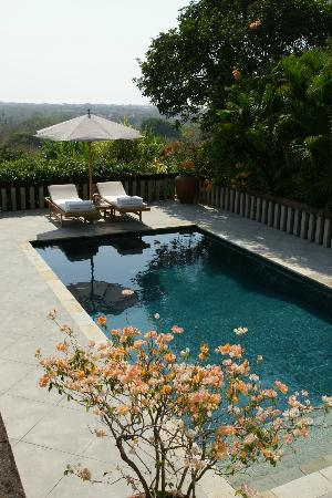 Aman Villas at Nusa Dua: Plunge pool