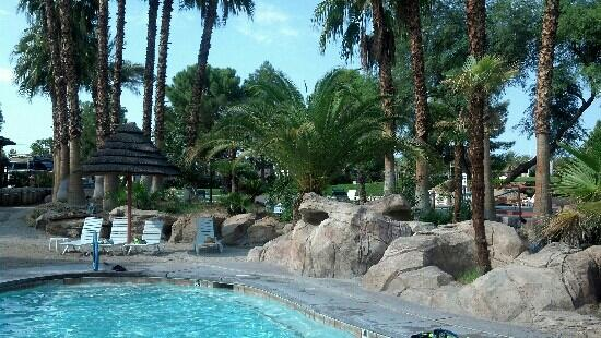 Oasis Las Vegas RV Resort : Oasis Las Vegas RV Park family pool