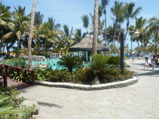 Coral Costa Caribe Resort & Spa: pool