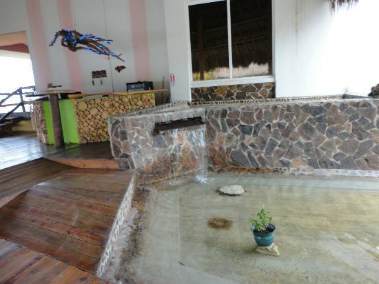 Hotel La Casa De Nery: recepcion