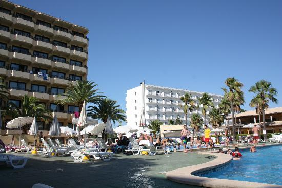 Sol Alcudia Center Apartamentos: Bild från poolområdet