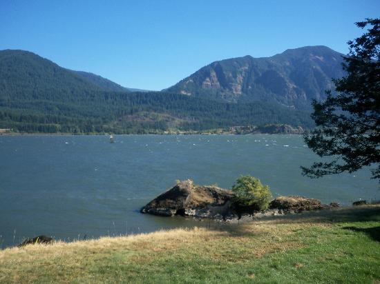 Skamania Coves Resort: view from River House