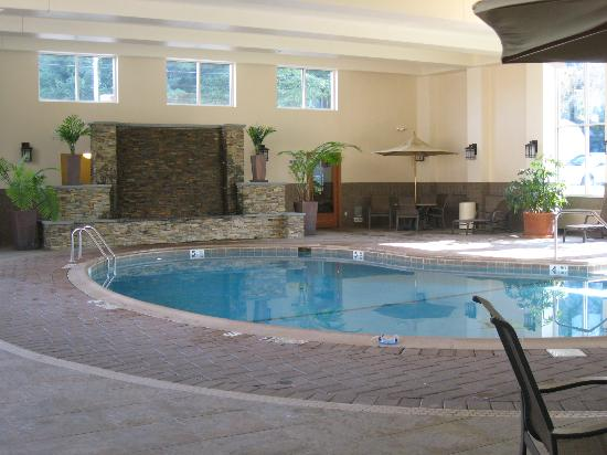 Holiday Inn Resort Lake George: indoor pool