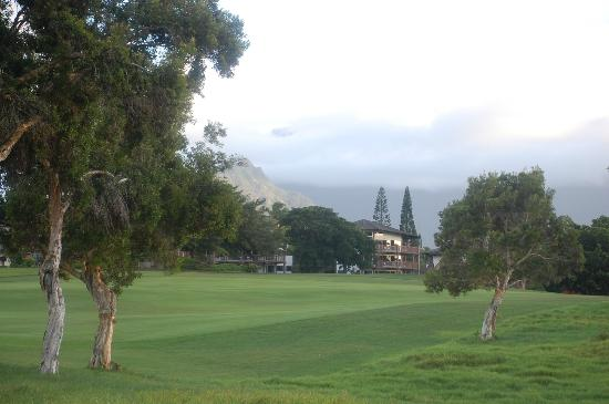 Wyndham Ka 'Eo Kai: View from the golf course
