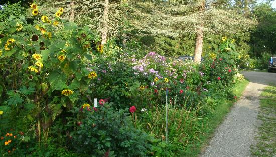 Staveleigh House Bed and Breakfast: Gardens make even the parking area look nice