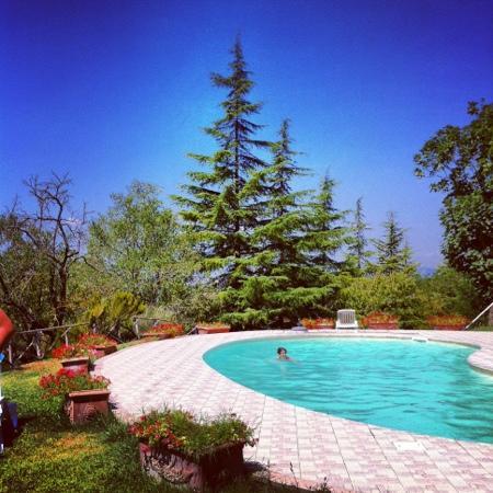 Agriturismo La Montagnola: piscina del poggio