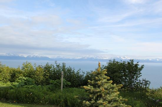 Alaska Adventure Cabins: View