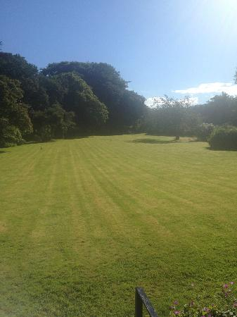 Plas Dinas Country House: Front garden (view from the terrace)