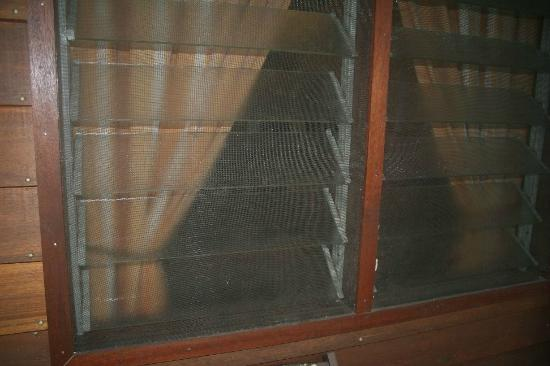 Sepilok B&B: Mosquito defence