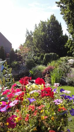 Albion Manor Bed and Breakfast: More Lovely Gardens