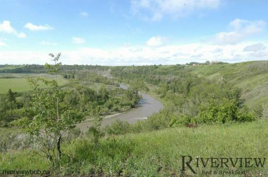 Riverview Bed & Breakfast: The Sheep River