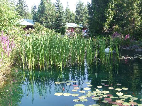 Bonners Ferry Log Inn: Pond area