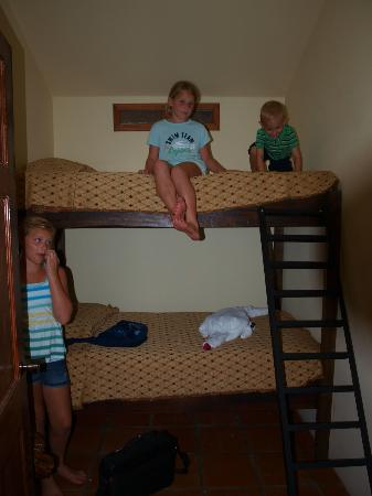 Toad Hall Hotel Arenal: Bunk Room