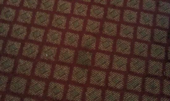 Holiday Inn Express Solvang : carpet stain one of many