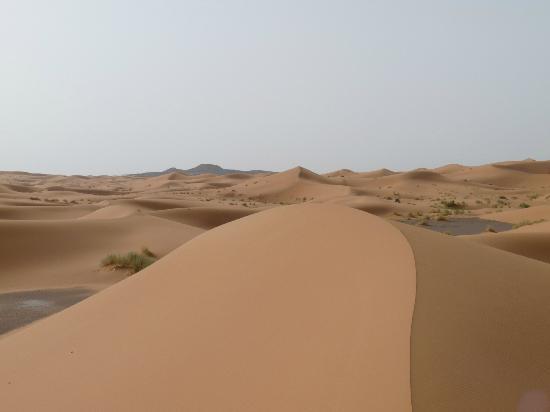 Guest House Merzouga: Les dunes