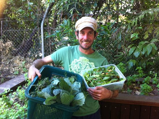 Eat at Martins : Dan with a fresh load of organic greens from his farm.