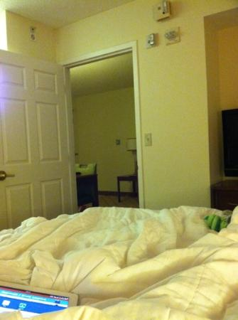 Residence Inn Tampa Downtown: bedroom and living room. good space