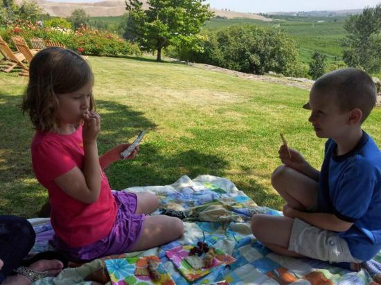 Windy Point Vineyards: picnic