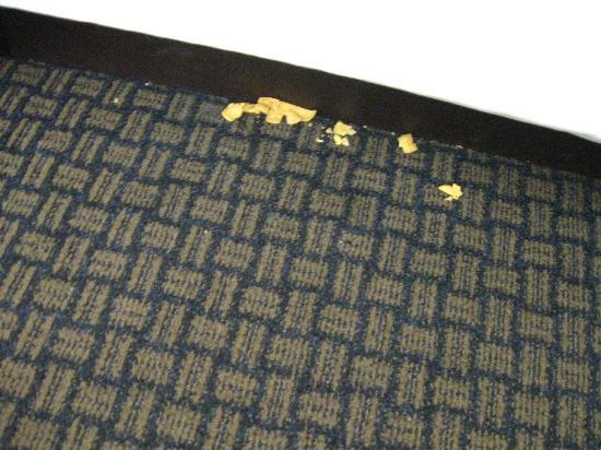 Hawthorn Suites by Wyndham Lancaster : Corn chip under bed