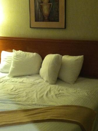 The Ashley Inn of Tillamook : I like for my bed to look MADE when I check in