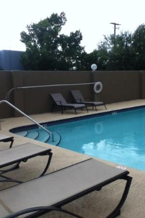 BEST WESTERN Tampa: pool
