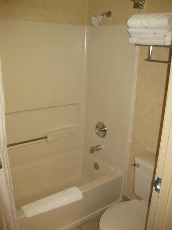 Comfort Inn Green River: bathroom, dated but clean