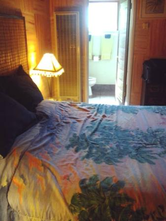 Cinderella Motel: Tropical Room photo 1