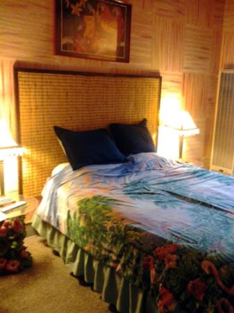 Cinderella Motel: Tropical Room photo 2