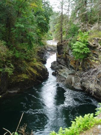 Port Alberni, Canada: The Canyon below the falls