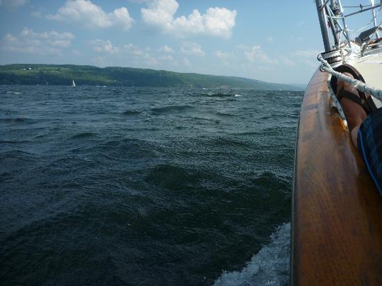 Seneca Sailing Adventures : Cruising along on the Sea Lee Anne
