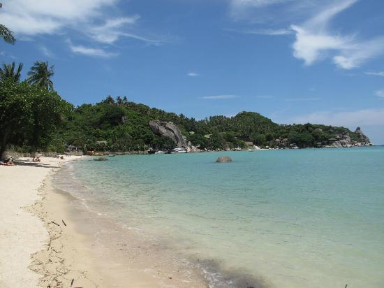 Koh Tao Tropicana Resort: The beach, looking east