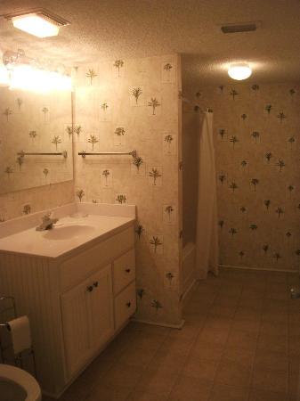 Springs Towers: Bathroom