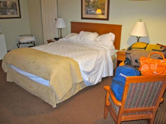 BEST WESTERN Salmon Arm Inn : Small unit with queen bed