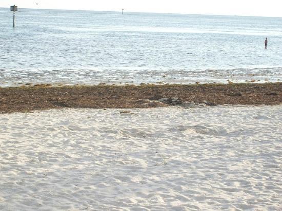 Keaton Beach Near Perry Fl