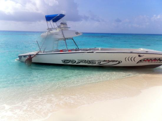 San Andres Guided Segway Tours : cayo bolivar