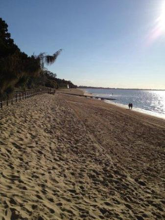 Shelly Bay Resort : Beach - almost all to yourself