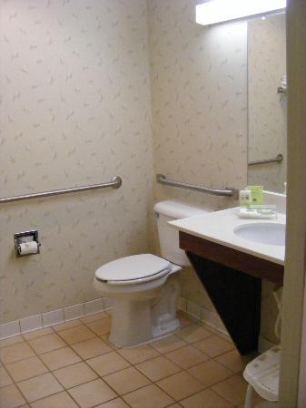 Country Inn & Suites by Radisson, Decorah, IA: Toilet/vanity