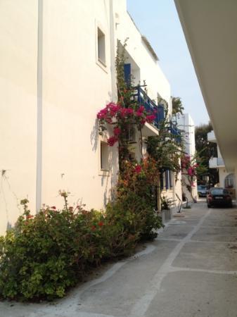 Hotel Galini & Sofia Latina: hotel view