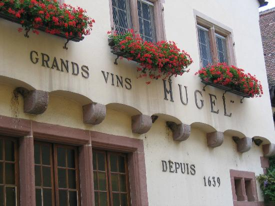 Hugel et Fils : La Maison Hugel